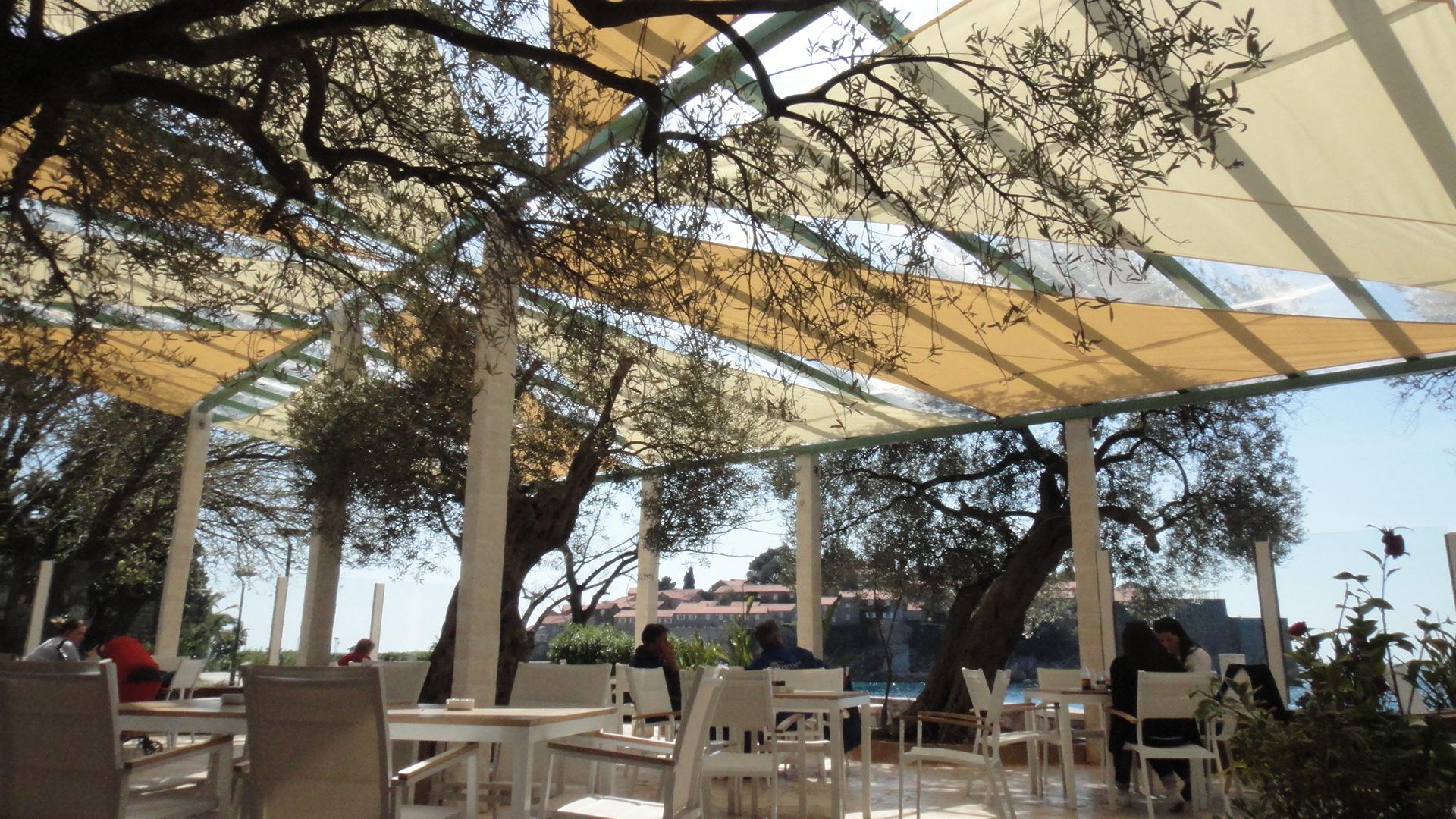 jedra-olive